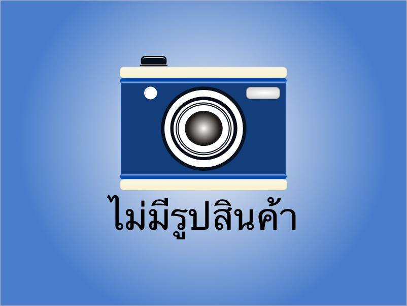 HIGH POWER TYPE